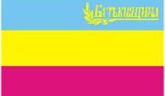 Прапор БЮТ