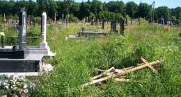 Трускавецький цвинтар в Станилі