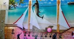 Трускавецький дельфінарій влаштував сюрприз для військових лікарів та бійців АТО