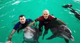 Як трускавецькі дельфіни лікують поранених бійців
