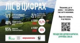Українці об'єднуються для збереження і відновлення Карпат