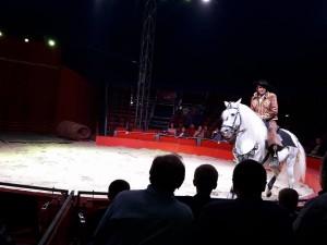 Цирк «Кобзов»: радість для дітей та дорослих