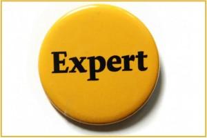 Чим може займатися експертна рада?