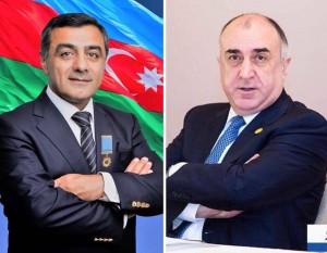 Эльмар Мамедов о министре иностранных дел Азербайджана