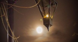 У Дрогобичі запалено легендарного ліхтаря
