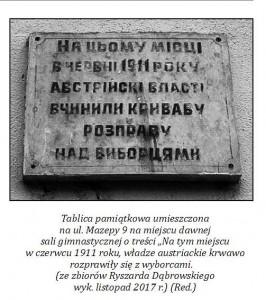 """""""Krwawe wybory"""" w Drohobyczu"""